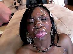 The Exploited Ebony Cumpilation