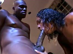 Sexy Black Girl Sucking And Fucking