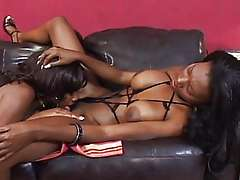 Hot black babes riding on